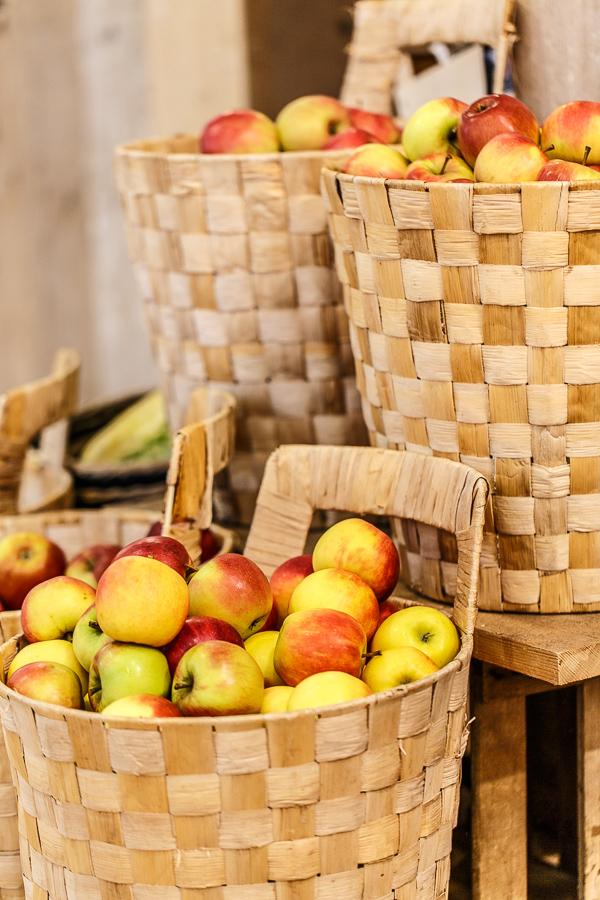 Der Obstladenund was dazugehoert 230314imgl0296